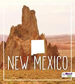 New Mexico af Tyler Maine