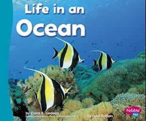 Bog, paperback Life in an Ocean af Carol K. Lindeen