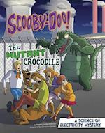 Scooby-Doo! a Science of Electricity Mystery (Scooby Doo Solves It with S T E M)