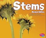 Stems (Plant Parts)