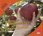 Cosecha de Manzanas/Apple Harvest (Todo Acerca del OtonoAll About Fall)