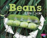 A Bean's Life Cycle (Explore Life Cycles)