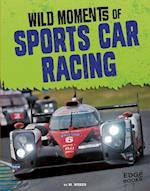 Wild Moments of Sports Car Racing (Wild Moments of Motorsports)