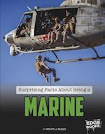 Surprising Facts about Being a Marine (What You Didnt Know about the U S Military Life)