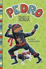 Pedro the Ninja (Pedro)