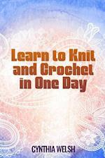 Learn to Knit and Crochet in One Day by Cynthia Welsh af Cynthia Welsh