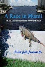A Race in Miami