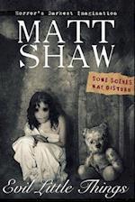Evil Little Things af Matt Shaw