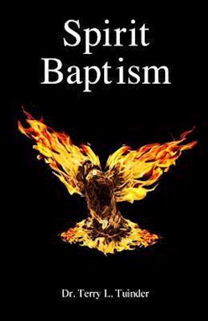 Bog, paperback Spirit Baptism af Dr Terry L. Tuinder