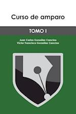 Curso de Amparo af Juan Carlos Gonzalez Cancino