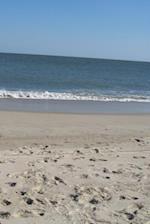 Journal - Beach
