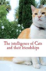 The Intelligence of Cats and Their Friendships