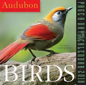 Audubon Birds 2018 Calendar