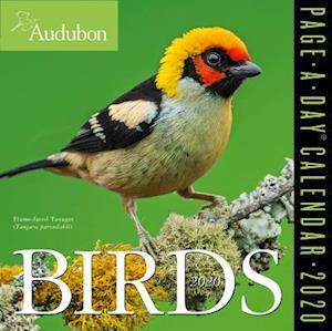 2020 Audubon Birds Colour Page-A-Day Calendar