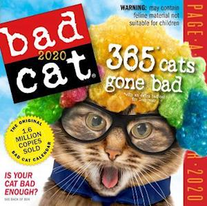 2020 Bad Cat Colour Page-A-Day Calendar