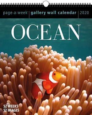 2020 Ocean Gallery Wall