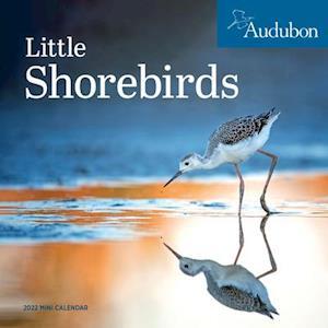 2022 Audubon Little Shorebirds Mini