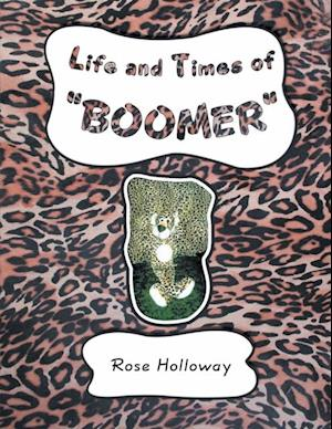 Life and Times of 'Boomer'