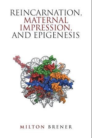 Bog, hæftet Reincarnation, Maternal Impression, and Epigenesis af Milton Brener