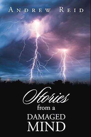 Bog, paperback Stories from a Damaged Mind af Andrew Reid