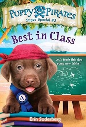 Bog, paperback Puppy Pirates Super Special #2 af Erin Soderberg