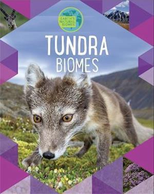 Earth's Natural Biomes: Tundra