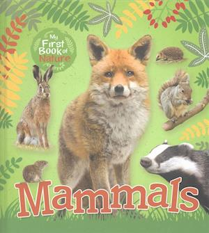 Bog, hardback My First Book of Nature: Mammals af Victoria Munson