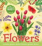 Flowers (My First Book of Nature, nr. 3)