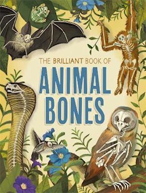 The Brilliant Book of Animal Bones