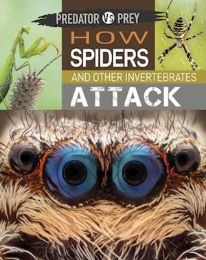Predator vs Prey: How Spiders and other Invertebrates Attack