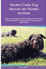 Flanders Cattle Dog (Bouvier Des Flandes) Activities Flanders Cattle Dog Tricks, Games & Agility. Includes af Austin Ogden
