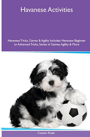 Havanese (Bichon Havanais) Activities Havanese Tricks, Games & Agility. Includes: Havanese Beginner to Advanced Tricks, Series of Games, Agility and M