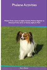 Phalene Activities Phalene Tricks, Games & Agility. Includes: Phalene Beginner to Advanced Tricks, Series of Games, Agility and More af Harry Hunter