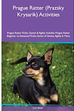 Prague Ratter (Prazsky Krysarik) Activities Prague Ratter Tricks, Games & Agility. Includes: Prague Ratter Beginner to Advanced Tricks, Series of Game af Carl Slater