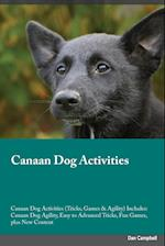 Canaan Dog Activities Canaan Dog Activities (Tricks, Games & Agility) Includes: Canaan Dog Agility, Easy to Advanced Tricks, Fun Games, plus New Conte af Joshua Rees