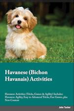 Havanese Bichon Havanais Activities Havanese Activities (Tricks, Games & Agility) Includes af Dominic Parr