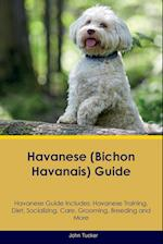 Havanese (Bichon Havanais) Guide Havanese Guide Includes: Havanese Training, Diet, Socializing, Care, Grooming, Breeding and More
