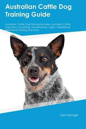 Bog, hæftet Australian Cattle Dog Training Guide Australian Cattle Dog Training Includes: Australian Cattle Dog Tricks, Socializing, Housetraining, Agility, Obedi af Neil McLean