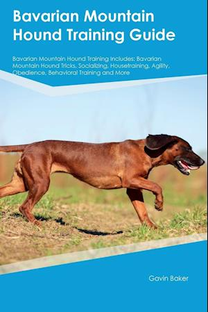 Bog, hæftet Bavarian Mountain Hound Training Guide Bavarian Mountain Hound Training Includes: Bavarian Mountain Hound Tricks, Socializing, Housetraining, Agility, af Phil Martin
