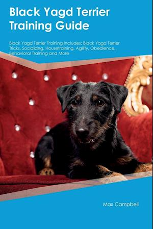 Bog, paperback Black Yagd Terrier Training Guide Black Yagd Terrier Training Includes af Charles Quinn