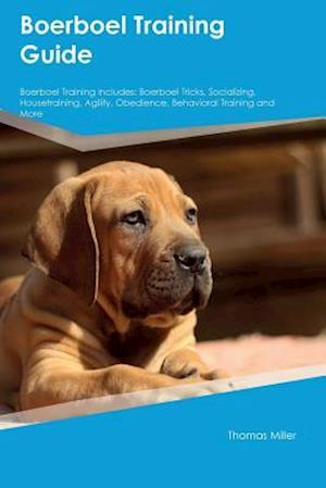 Bog, hæftet Boerboel Training Guide Boerboel Training Includes: Boerboel Tricks, Socializing, Housetraining, Agility, Obedience, Behavioral Training and More af Adam Arnold