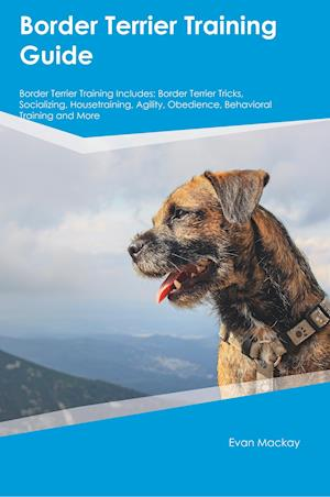 Bog, hæftet Border Terrier Training Guide Border Terrier Training Includes: Border Terrier Tricks, Socializing, Housetraining, Agility, Obedience, Behavioral Trai af James Burgess