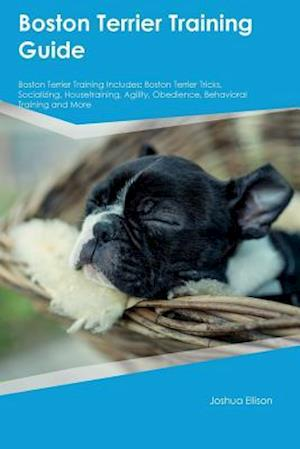Bog, hæftet Boston Terrier Training Guide Boston Terrier Training Includes: Boston Terrier Tricks, Socializing, Housetraining, Agility, Obedience, Behavioral Trai af Ryan Campbell