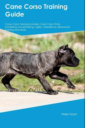 Bog, hæftet Cane Corso Training Guide Cane Corso Training Includes: Cane Corso Tricks, Socializing, Housetraining, Agility, Obedience, Behavioral Training and Mor af William Sanderson