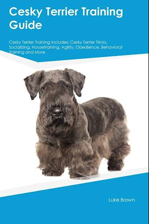 Bog, hæftet Cesky Terrier Training Guide Cesky Terrier Training Includes: Cesky Terrier Tricks, Socializing, Housetraining, Agility, Obedience, Behavioral Trainin af Peter Carr