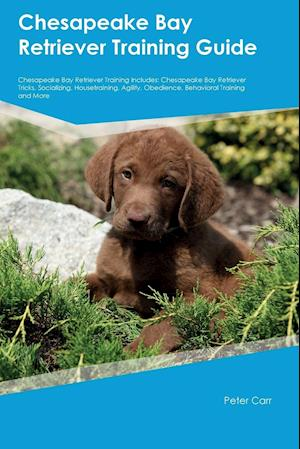 Bog, hæftet Chesapeake Bay Retriever Training Guide Chesapeake Bay Retriever Training Includes: Chesapeake Bay Retriever Tricks, Socializing, Housetraining, Agili af Gordon Buckland