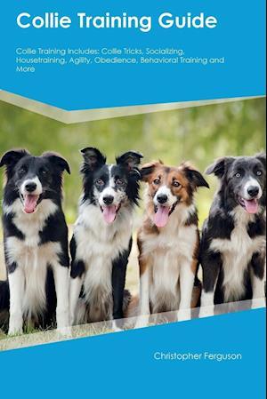 Bog, paperback Collie Training Guide Collie Training Includes af Alexander MacKay