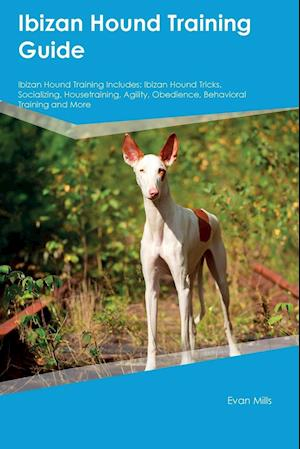 Bog, paperback Ibizan Hound Training Guide Ibizan Hound Training Includes af Evan Mills