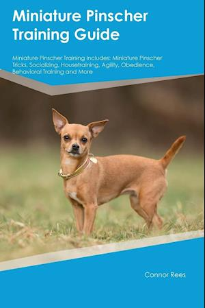 Bog, hæftet Miniature Pinscher Training Guide Miniature Pinscher Training Includes: Miniature Pinscher Tricks, Socializing, Housetraining, Agility, Obedience, Beh af Connor Rees
