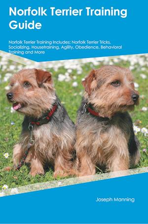 Bog, paperback Norfolk Terrier Training Guide Norfolk Terrier Training Includes af Evan Ball